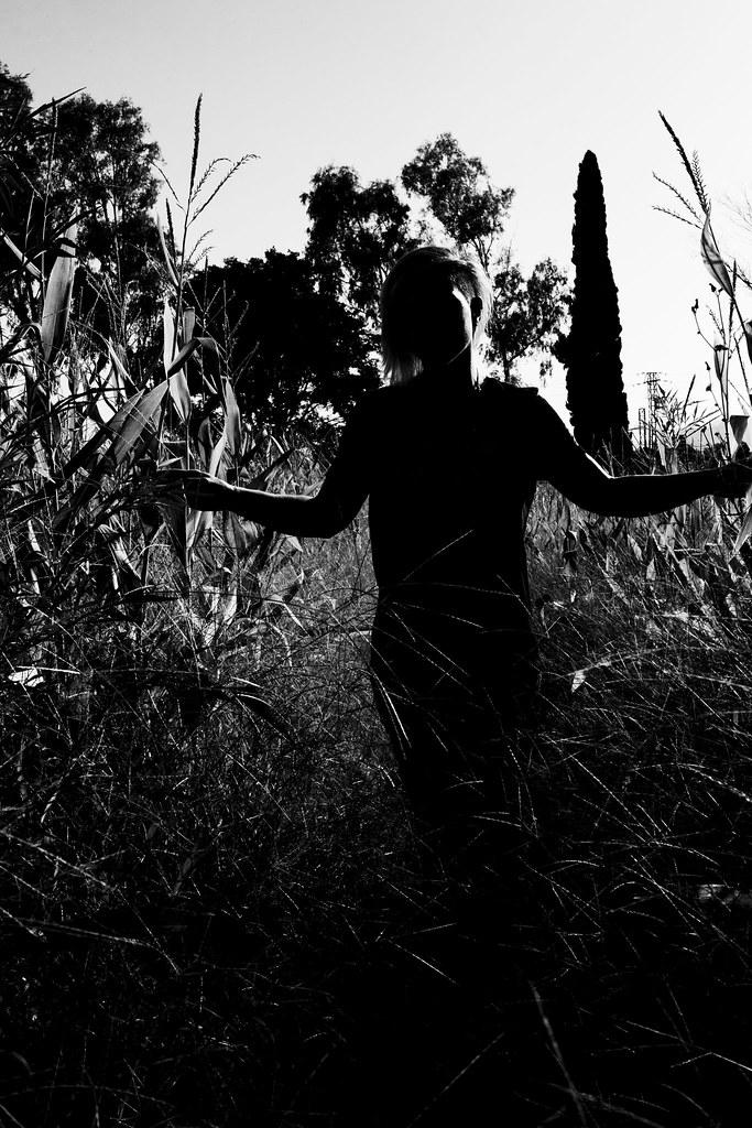 Campos oscuros