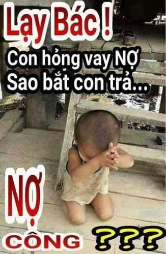 no_cong01