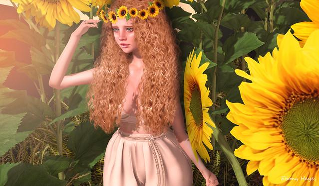 SunFlower Beauty!!