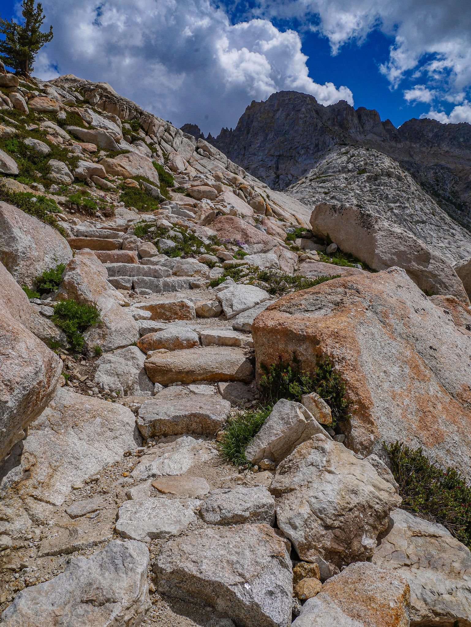 Stairs to Burro Pass
