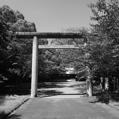 31-07-2020 Zentsuji City, Kagawa pref (10)