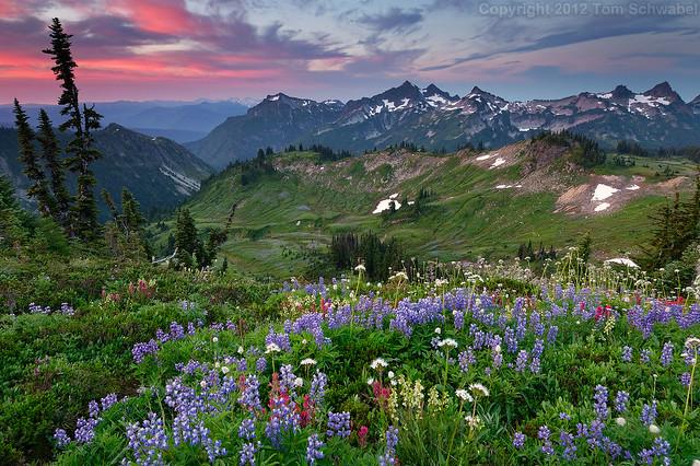 Alpine Wonderland [Re-Edit]