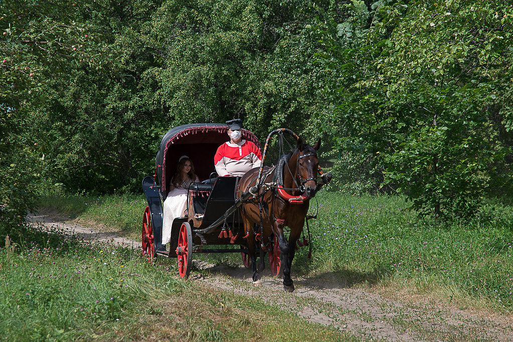 Прогулка в экипаже по конному маршруту