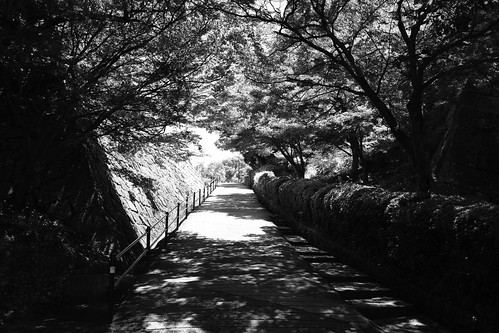 31-07-2020 Marugame Castle vol01 (7)