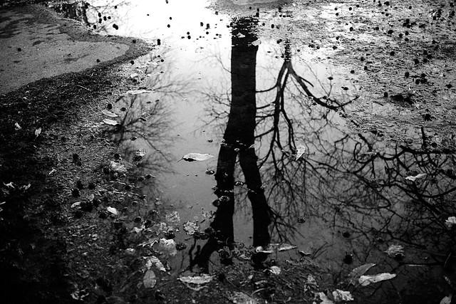 puddle.