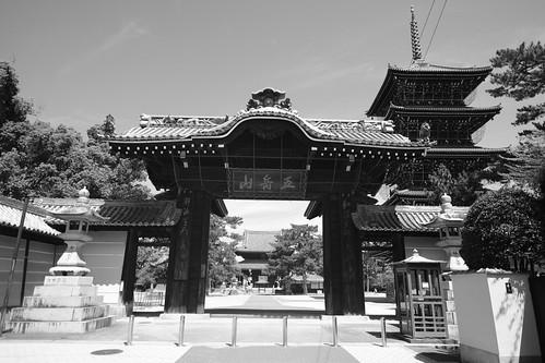31-07-2020 Zentsuji City, Kagawa pref (16)