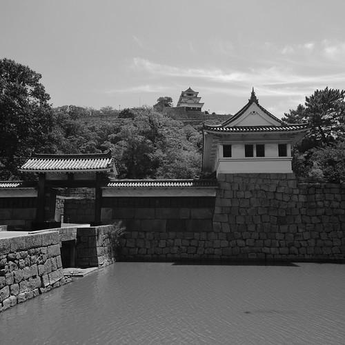 31-07-2020 Marugame Castle vol02 (19)