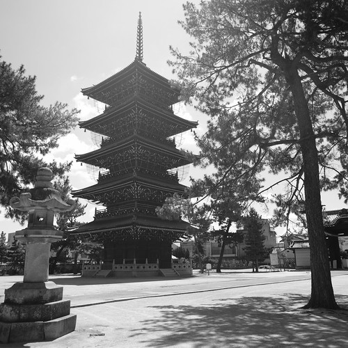 31-07-2020 Zentsuji City, Kagawa pref (27)