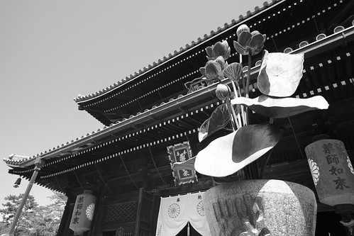 31-07-2020 Zentsuji City, Kagawa pref (25)