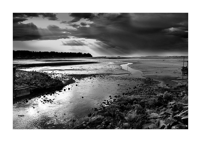 Morning Low tide in the Bay - B6W