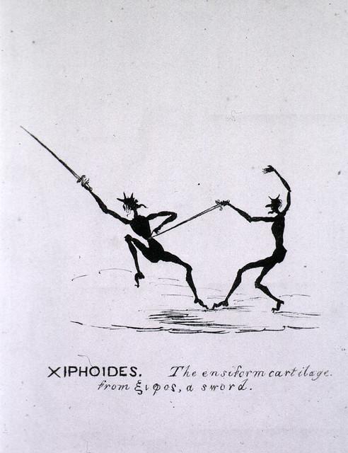 Xiphoides