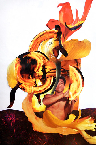 Magazine collage of a Flame Tulip / Fire Dancer
