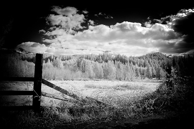 When the fence falls - HFF - infrared