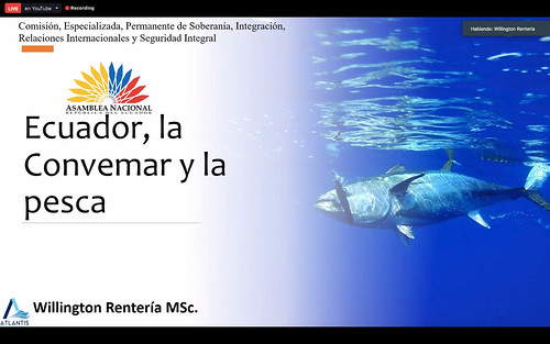 COMISIÓN DE RELACIONES INTERNACIONALES. VIRTUAL. QUITO, 31 DE JULIO DEL 2020