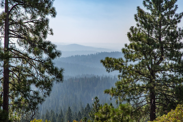 Armchair Traveling - Blue Haze on the Rim Trail, Arnold, California