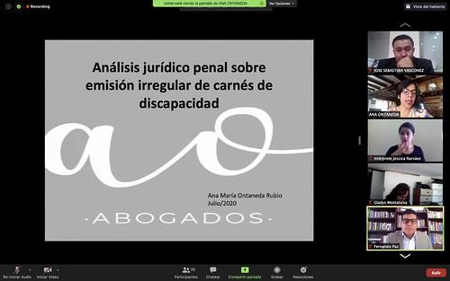 COMISIÓN DEL DERECHO A LA SALUD. ECUADOR, 31 DE JULIO DEL 2020