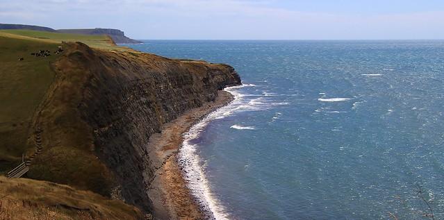 Jurassic Coast-World Heritage Site, Dorset 280720 (6)