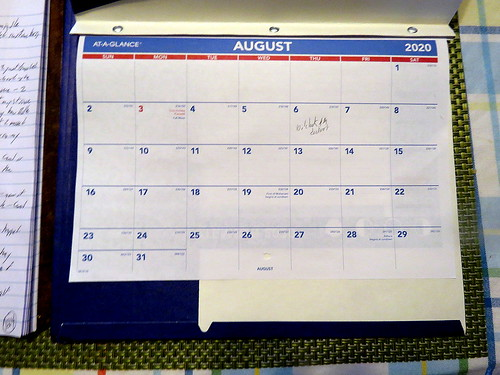 August 2020 Diary