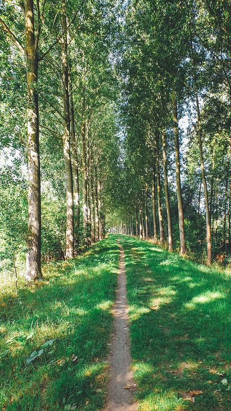 Bellemansdijk Moerzeke