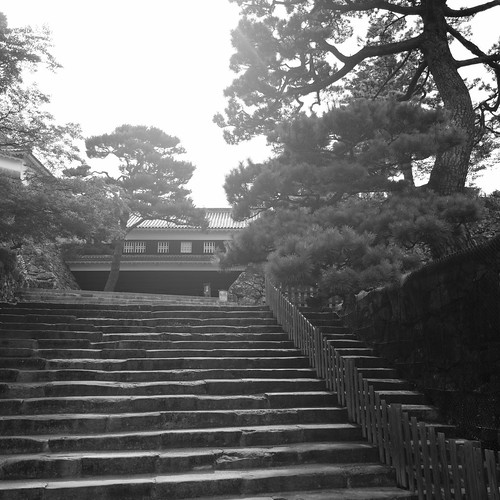 01-08-2020 Kochi (23)