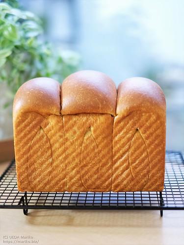 ミニトマト酵母のふすまパン 20200729-DSCT4188 (2)