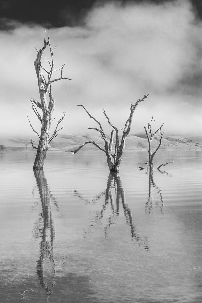 Lake St Clair NSW 7644