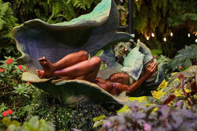 full-scale art exhibition in Cloud Forest