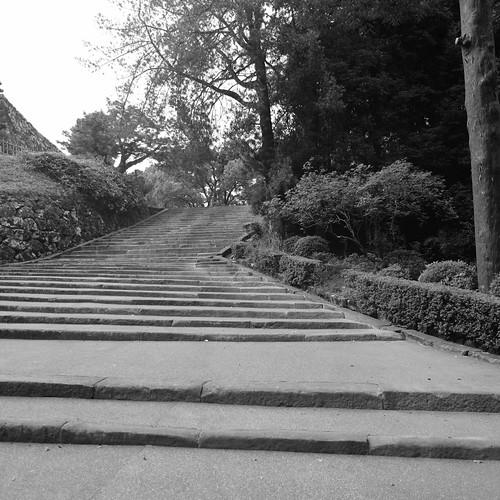 01-08-2020 Kochi (15)