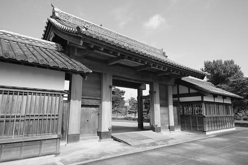 01-08-2020 Tokushima (8)