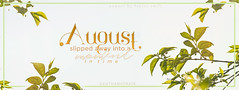 august simple cover