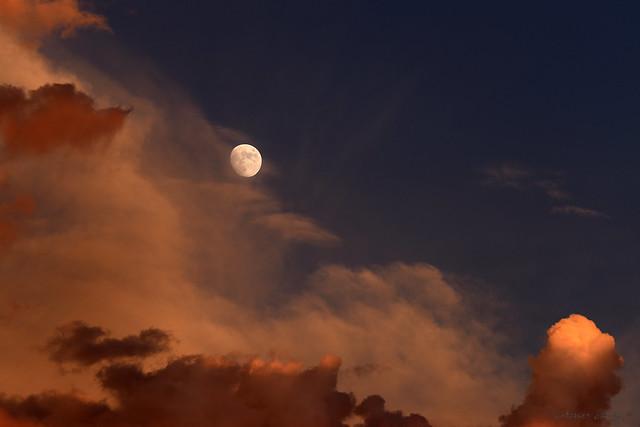 Sonoran Desert Sunset Moonrise
