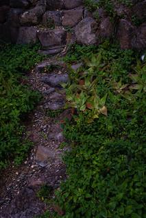 Arcosonti, path