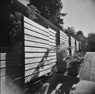 New Fence seen on daily walk