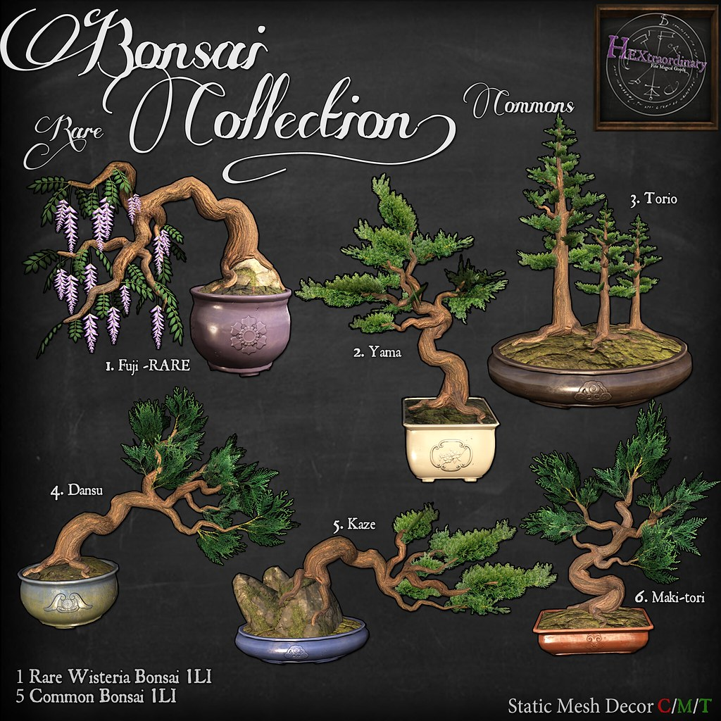 HEXtraordinary – Bonsai Collection – Gacha Garden