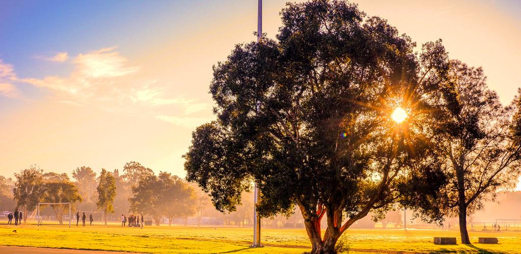 Memorial Park, Meadowbank, NSW