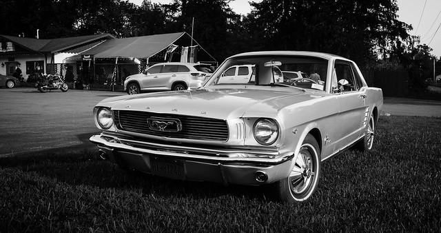 Muscle #14: '65 Mustang (The lady of the Lake)