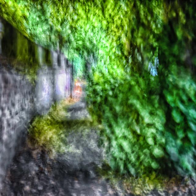 The leafy lane...