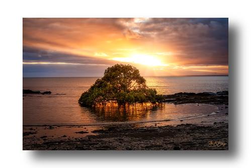 sun sunrise water ocean seaside sea beach landscape weather clouds orange colors morning herveybay australia queensland