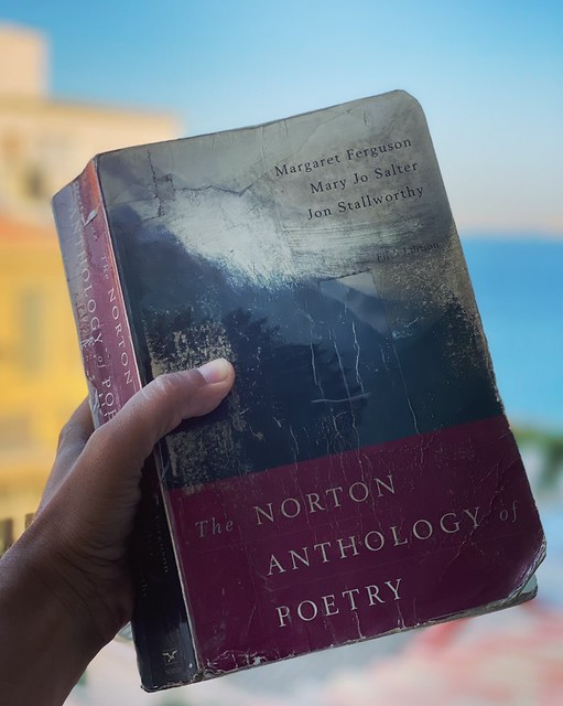 Delhi's Bandaged Heart – Life with Norton Poetry of Anthology, Central Delhi