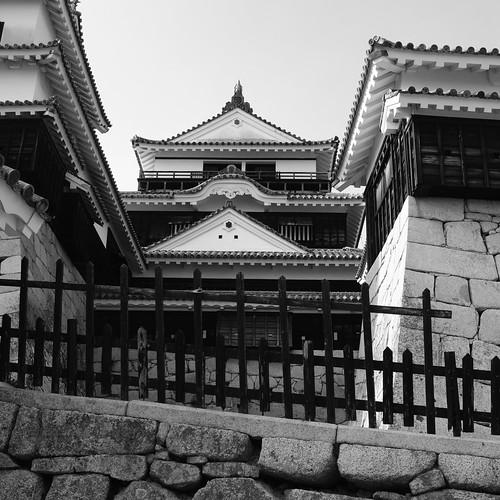 02-08-2020 Matsuyama vol01 (14)