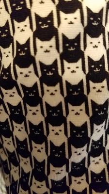 Catstooth