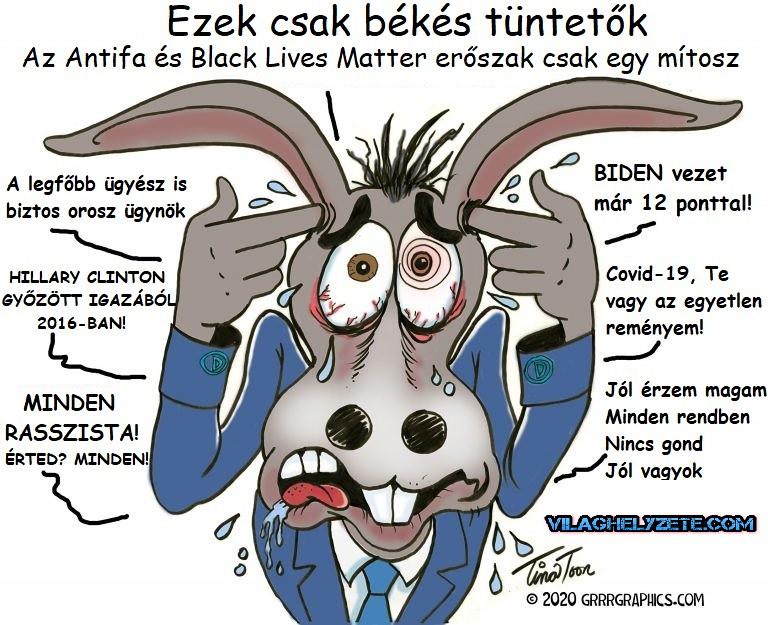 DEMOKRATÁK SZAMARA