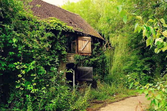 Abandoned Barn and ....