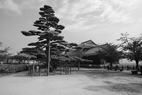 02-08-2020 Matsuyama vol02 (79)