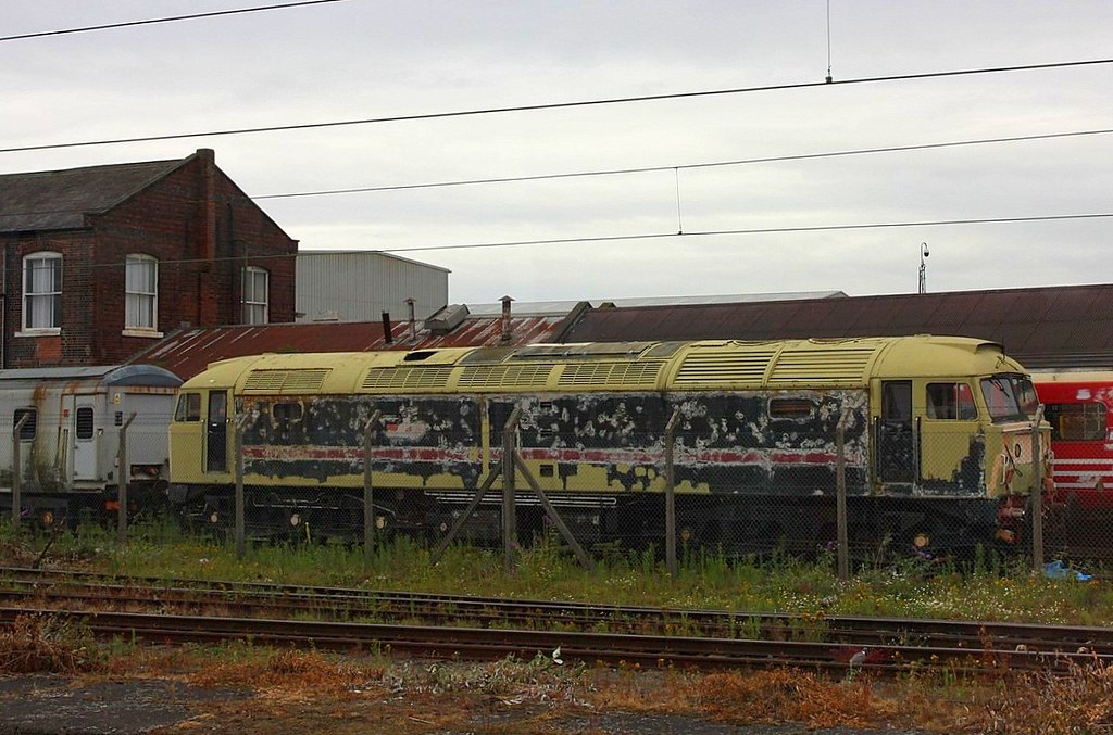 Mouldy Old Duff at Doncaster