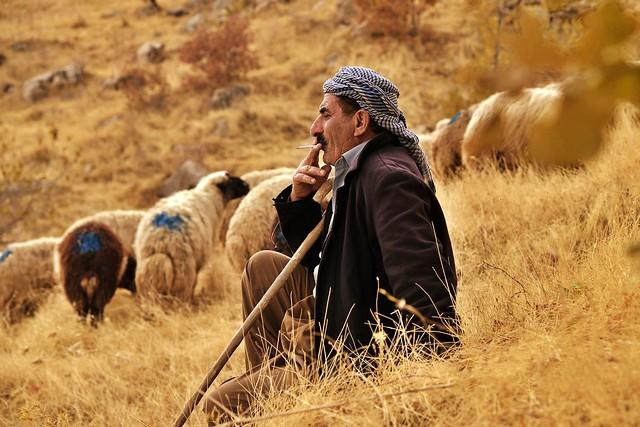 Kurdistan Namirî qet tu namirî ,miletê Kurd tu namirî.