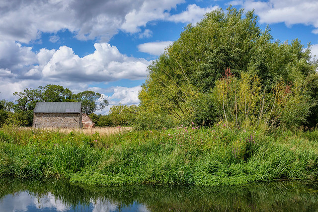 River Wey, Papercourt Meadows