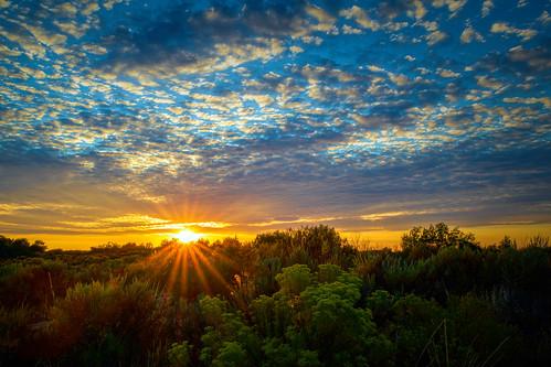 August 1st Sunset