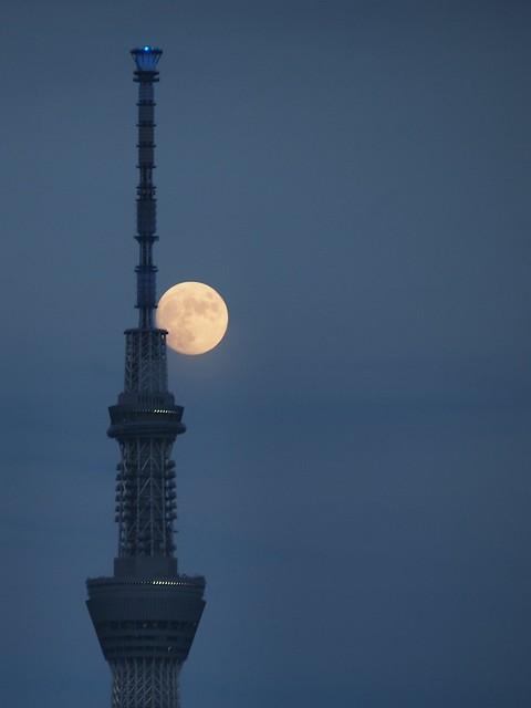 Lunar age 12.4