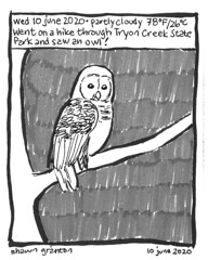 Journal Comic, 10 June 2020: Owl.